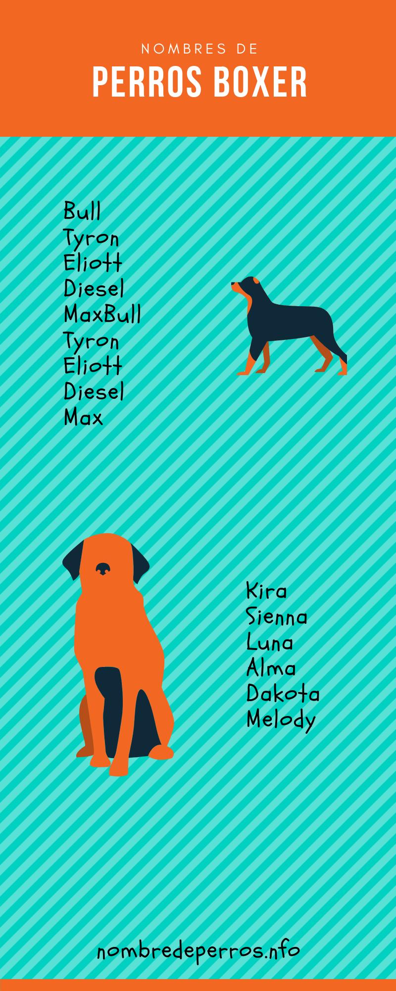 Nombres para perros boxer