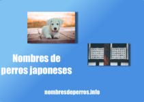 Nombres de perros japoneses