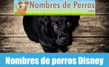 Nombres de perros Disney