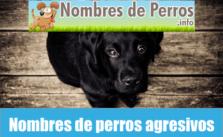 Nombres de perros agresivos