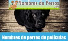 Nombres de perros de películas