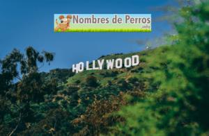 Nombres de perros de películas de Holywood