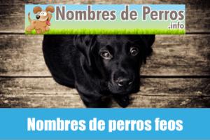 Nombres de perros feos