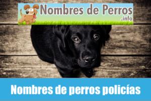 Nombres de perros policías